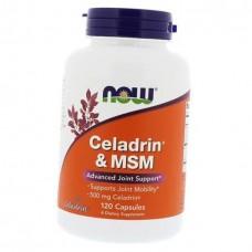 Celadrin & MSM